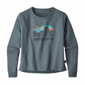 NWT Patagonia Sweatshirt Fitz Roy Boulders Uprisal